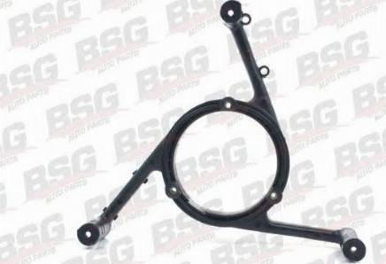 BSG BSG90922017 - Вентилятор, охлаждение двигателя avtodrive.by