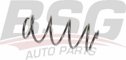 BSG BSG90305011 - Пружина ходовой части avtodrive.by