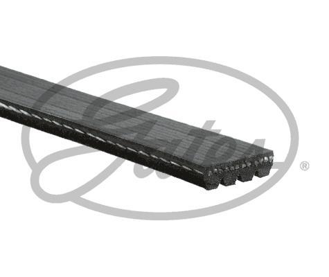 Gates 48366 - Поликлиновые ремни (продолные рёбра) avtodrive.by