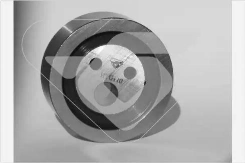 Hutchinson HTG 110 - Натяжной ролик, ремень ГРМ avtodrive.by