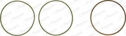 Payen HT5038 - Комплект прокладок, гильза цилиндра avtodrive.by