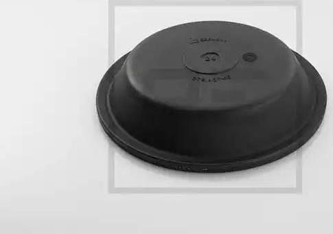 PE Automotive 076.405-10A - Мембрана, цилиндр пружинного энерго-аккумулятора avtodrive.by