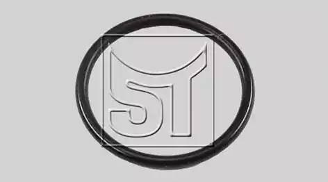 ST-Templin 02.210.7132.000 - Уплотнительное кольцо, резьбовая пробка маслосливного отверстия avtodrive.by