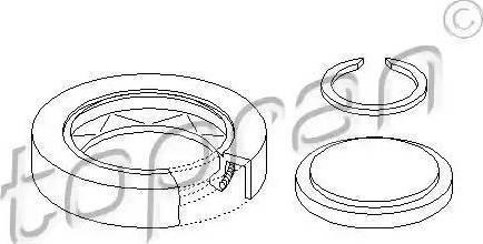 Topran 100 086 - Комплект ремонта, фланец автомат. коробки передач avtodrive.by